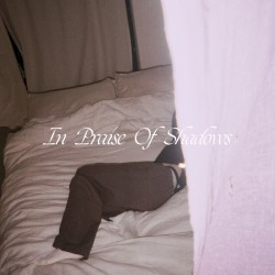In Praise of Shadows by Puma Blue